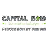Logo Capital Bois
