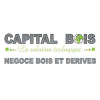 Logo Capital Bois
